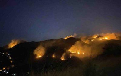 Incêndio fraudulento causa desastre ambiental de grandes proporções e prejuízo ecológico inestimável